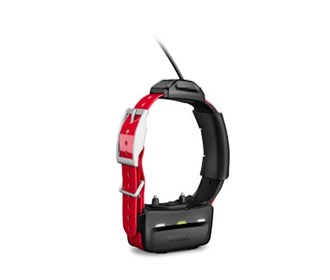 tritronics tt15 dog collar 010 01041 80