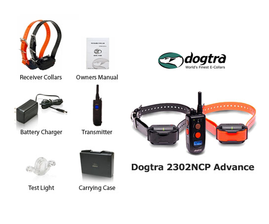 dogtra 2302ncp expandable